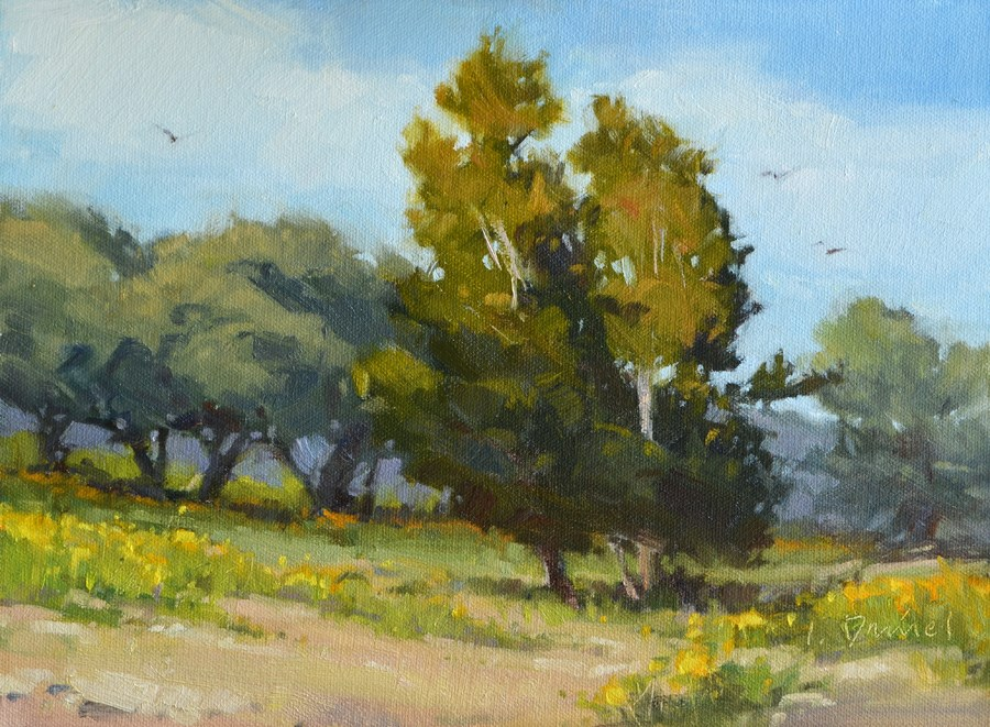 """Rolling Meadow - Exhibit at Davis Gallery"" original fine art by Laurel Daniel"