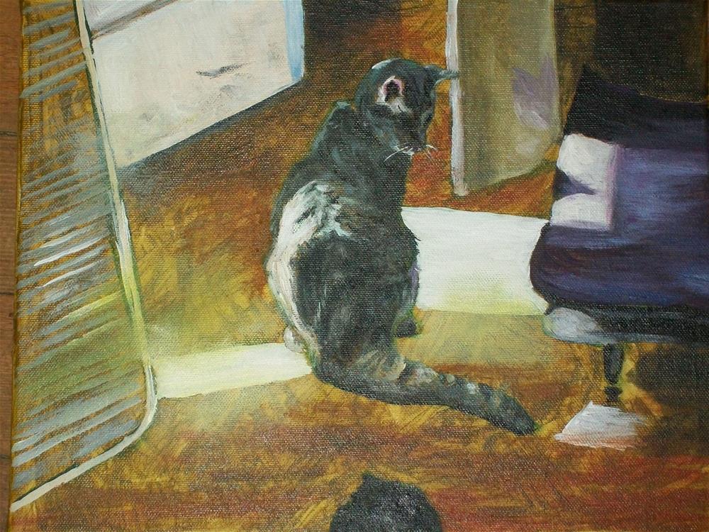 """My Kitty in the sunlight"" original fine art by tara stephanos"
