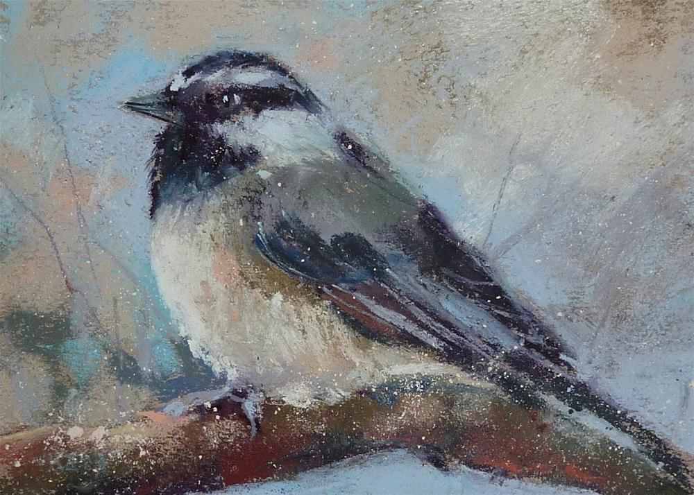 """Mini Pastel Demo ...Mountain Chickadee"" original fine art by Karen Margulis"
