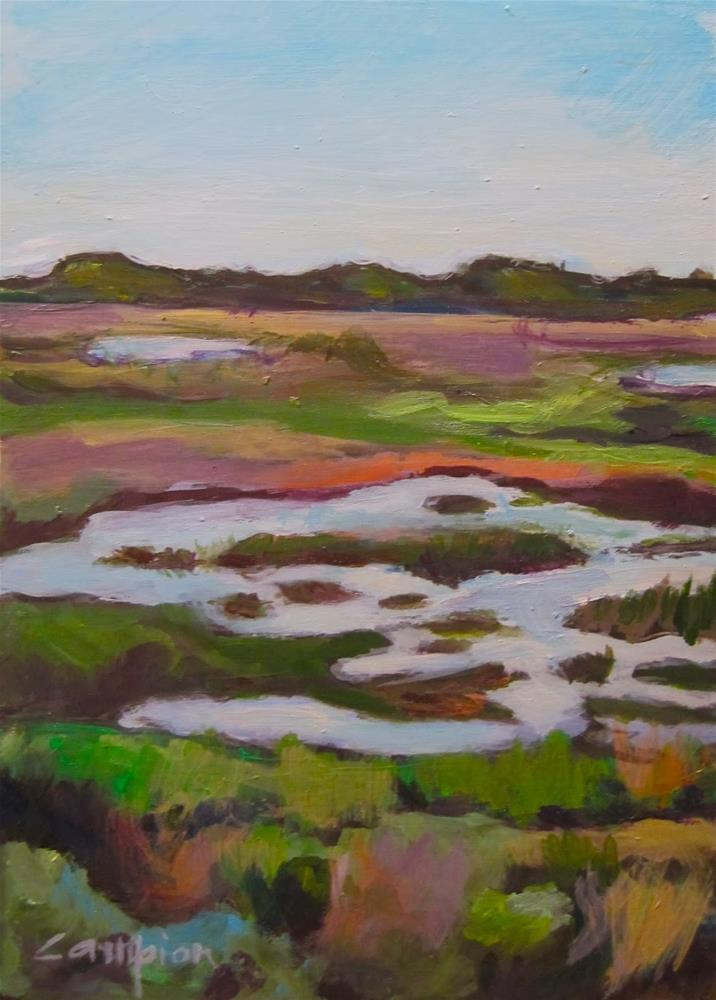 """207 The Marsh Stands Alone"" original fine art by Diane Campion"