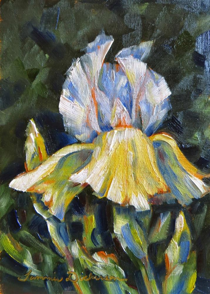 """Yellow and White Iris"" original fine art by Tammie Dickerson"