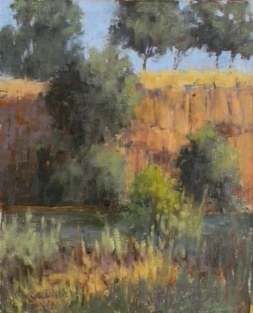 """American River Bluffs"" original fine art by Barbie Smith"