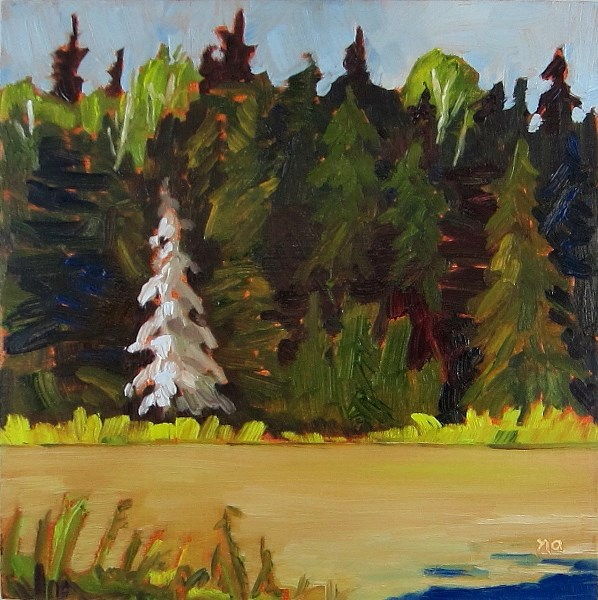 """Moss Laden Spruce"" original fine art by Nicki Ault"