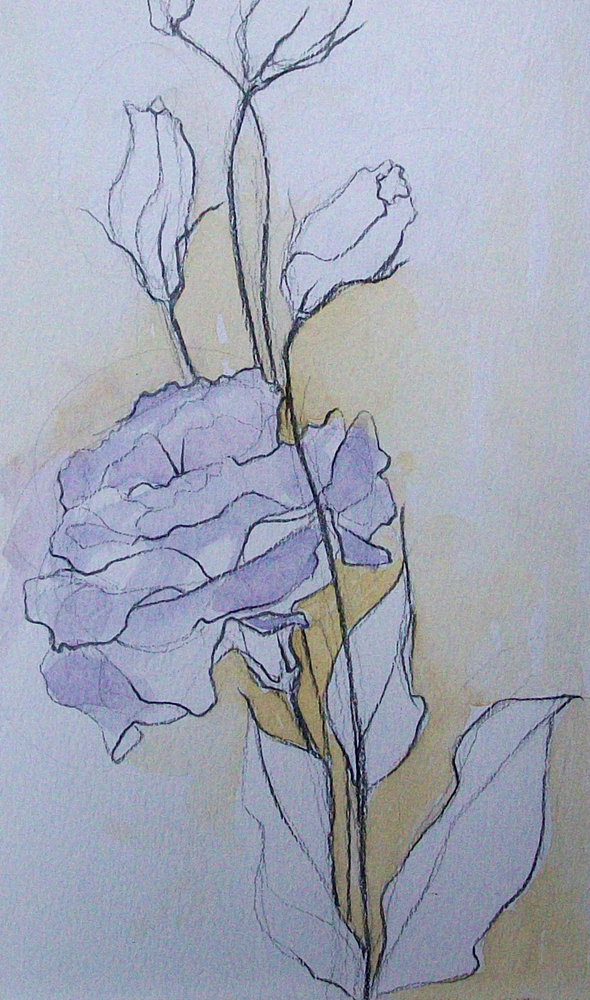"""flower sketch3"" original fine art by Brandi Bowman"