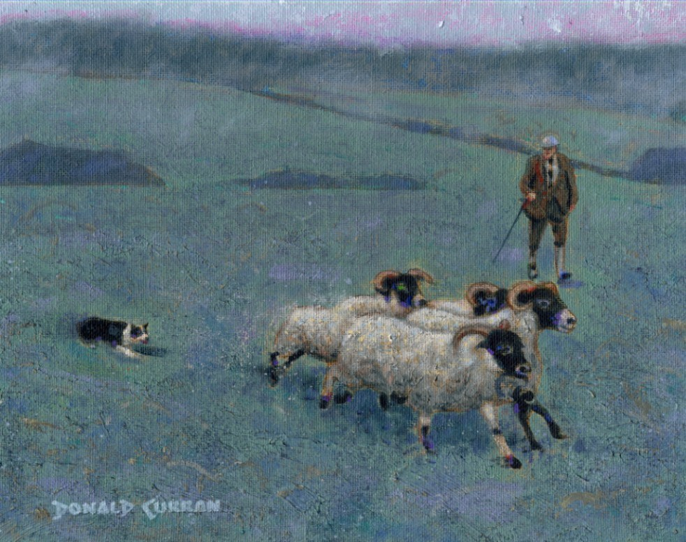 """Herding Sheep, Ireland"" original fine art by Donald Curran"