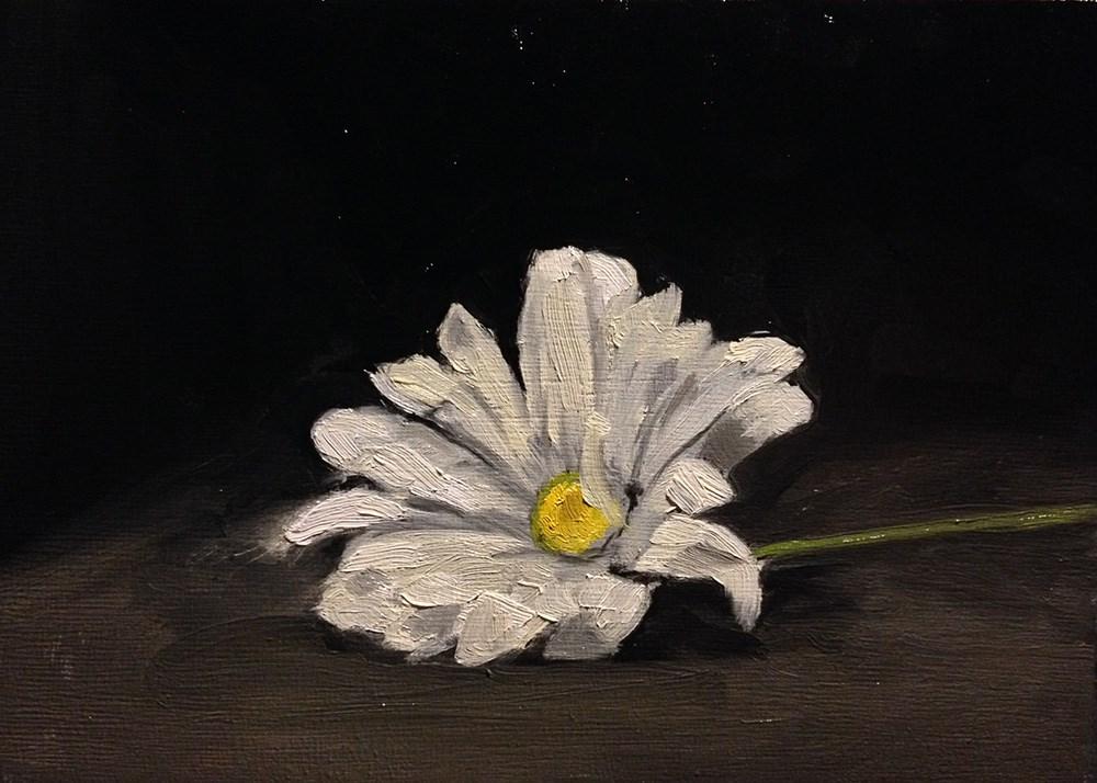 """White Daisy"" original fine art by Chris Beaven"