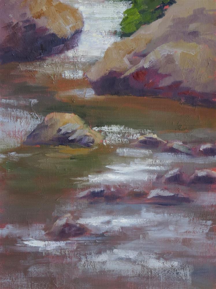 """""""Polished Boulders"""" original fine art by Pam Holnback"""