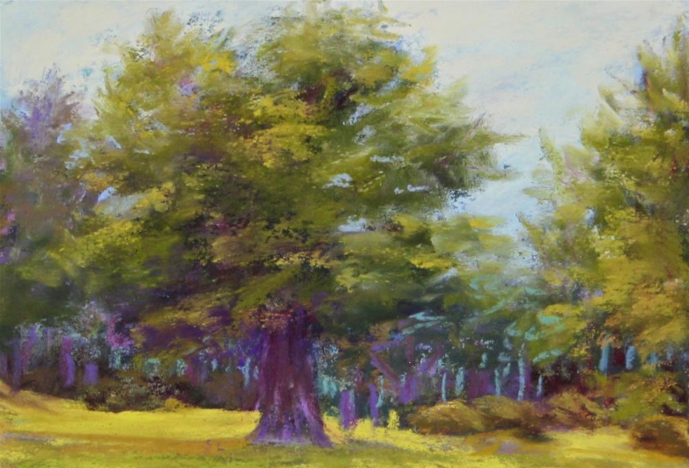"""""""Loch Lomond Trees"""" original fine art by Sharon Lewis"""