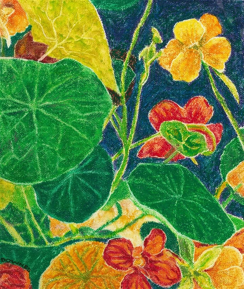 """131 NASTURTIUMS"" original fine art by Trevor Downes"