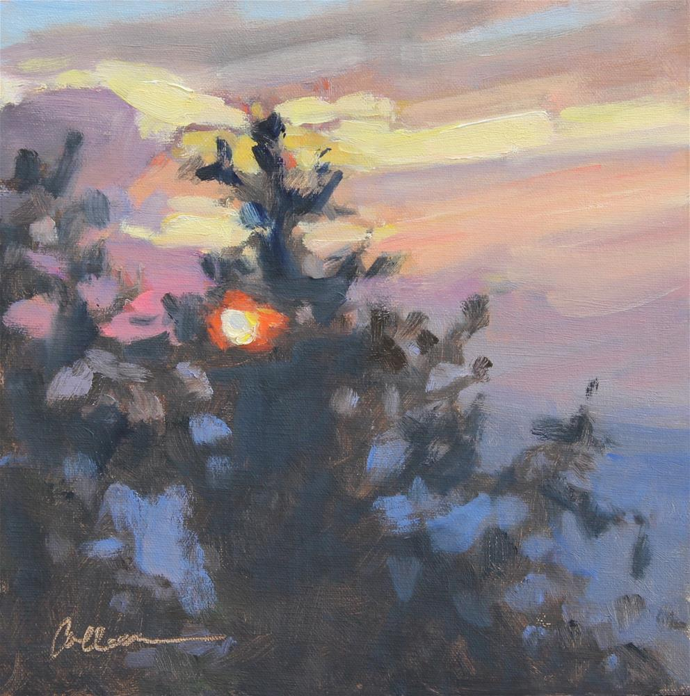 """Blue Ridge Sunset"" original fine art by Colleen Parker"