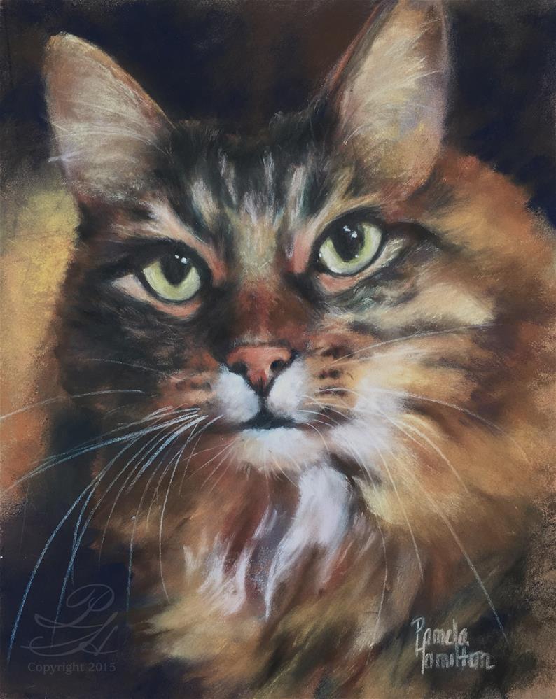 """Duffer"" original fine art by Pamela Hamilton"
