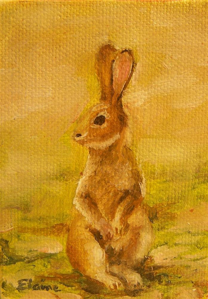 """Bunny"" original fine art by Elaine Evans"
