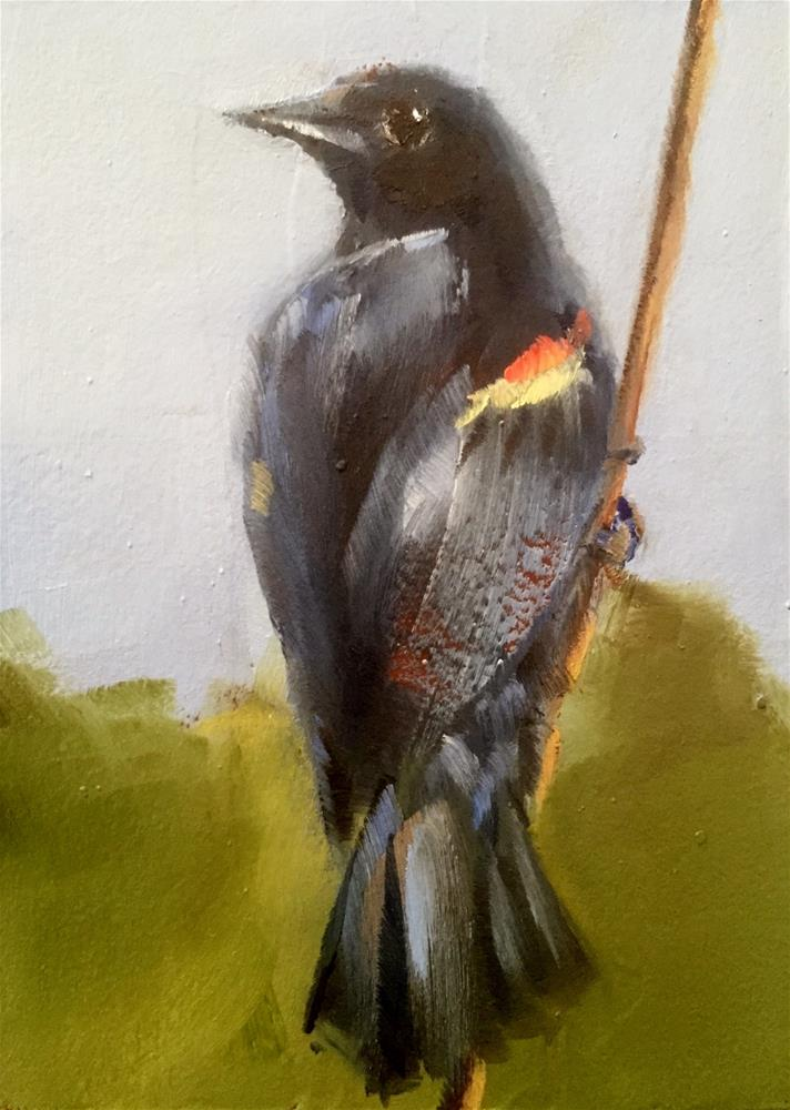 """Red Winged Blackbird"" original fine art by Gary Bruton"