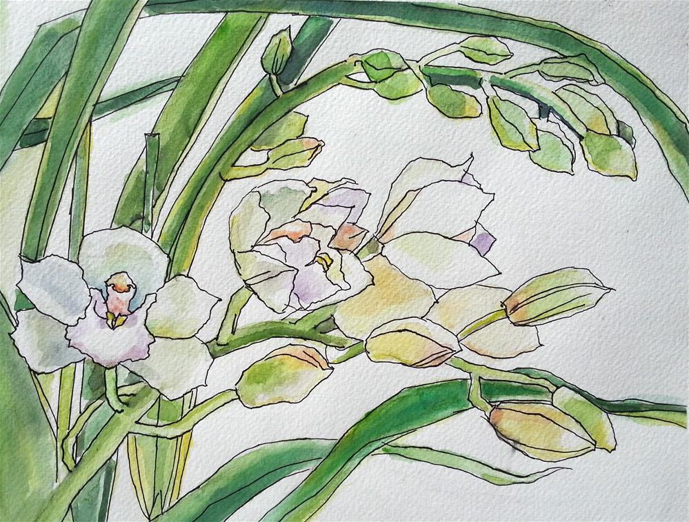 """Soft White Orchids"" original fine art by Nava Judith"