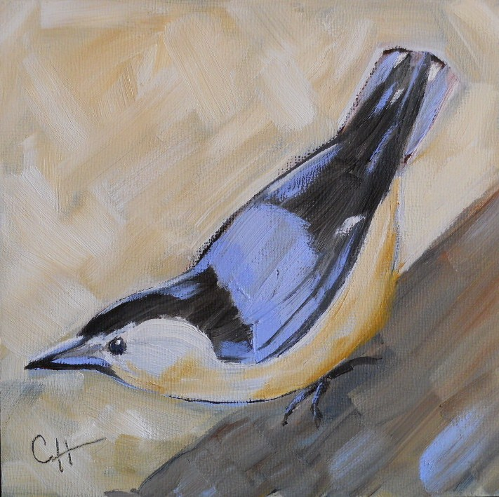 """Nuthatch"" original fine art by Claire Henning"