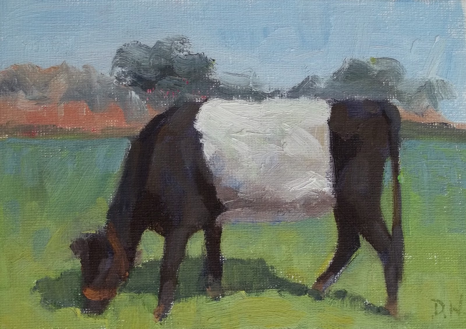 """Belted Galloway"" original fine art by Deborah Newman"