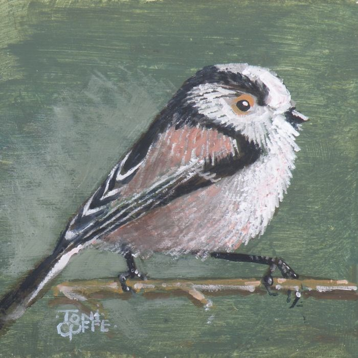 """Long Tailed Tit"" original fine art by Toni Goffe"