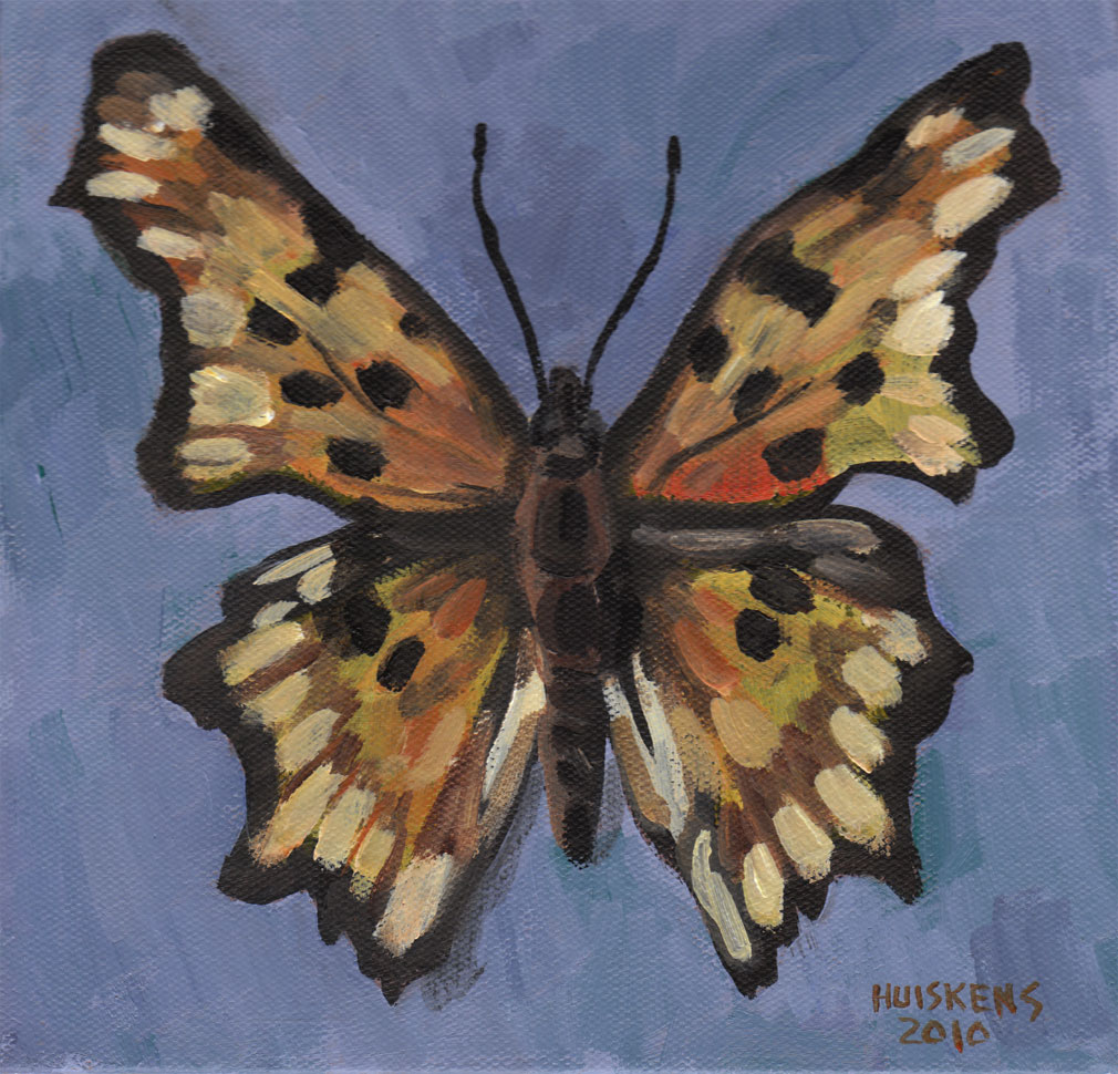 """Polygonia Butterfly"" original fine art by Randal Huiskens"