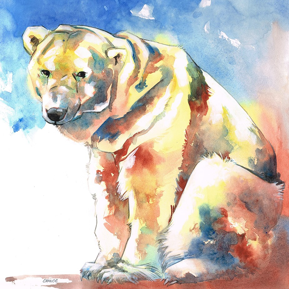 """Polar Bear"" original fine art by Annabel Chance"