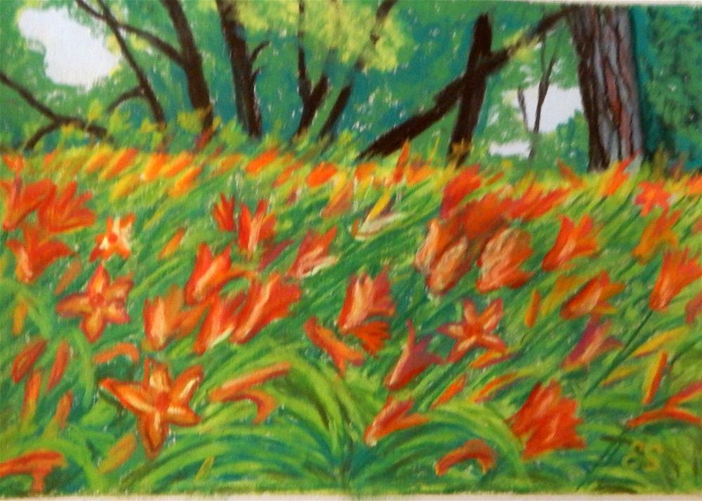 """""""Field of Daylillies"""" original fine art by Elaine Shortall"""