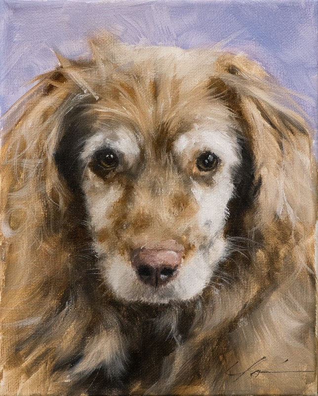 """PAINT MY DOG - Rhylee"" original fine art by Clair Hartmann"