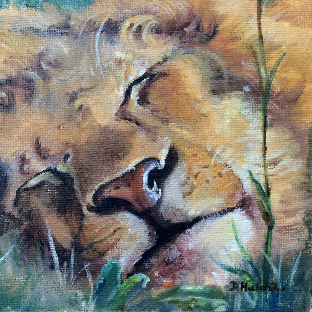 """Sleeping Lion"" original fine art by Diane Hutchinson"