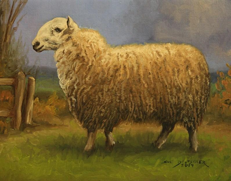 """""""Leicester Sheep"""" original fine art by Sue Deutscher"""