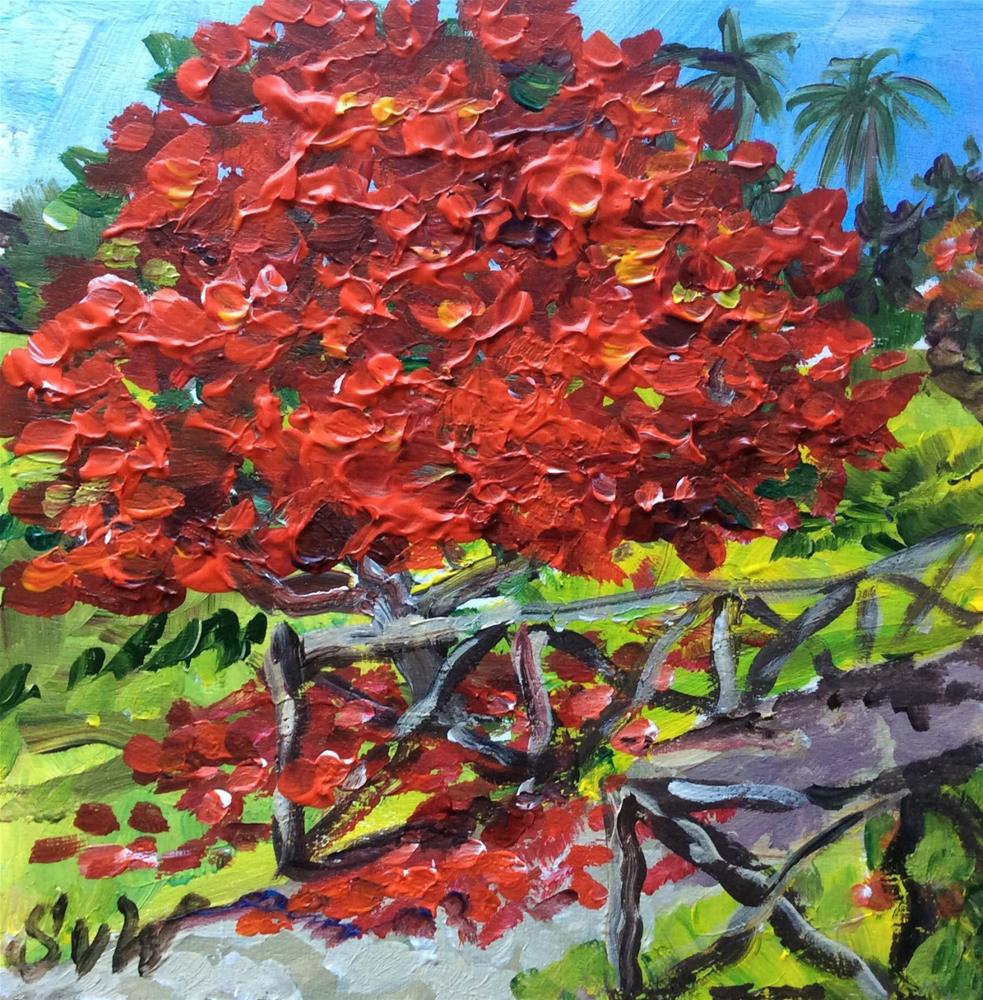"""Poinciana tree painting"" original fine art by Sonia von Walter"