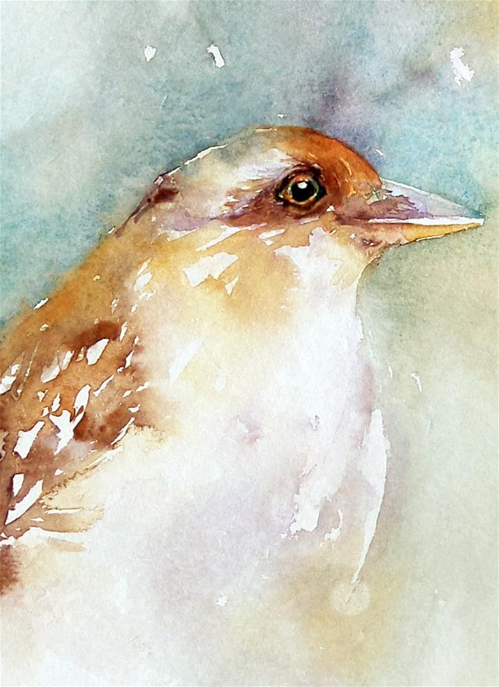 """""""Brown Eyed Bird"""" original fine art by Arti Chauhan"""
