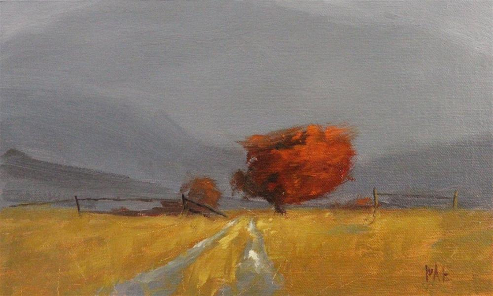 """Mountain Path 1"" original fine art by Thorgrimur Andri Einarsson"
