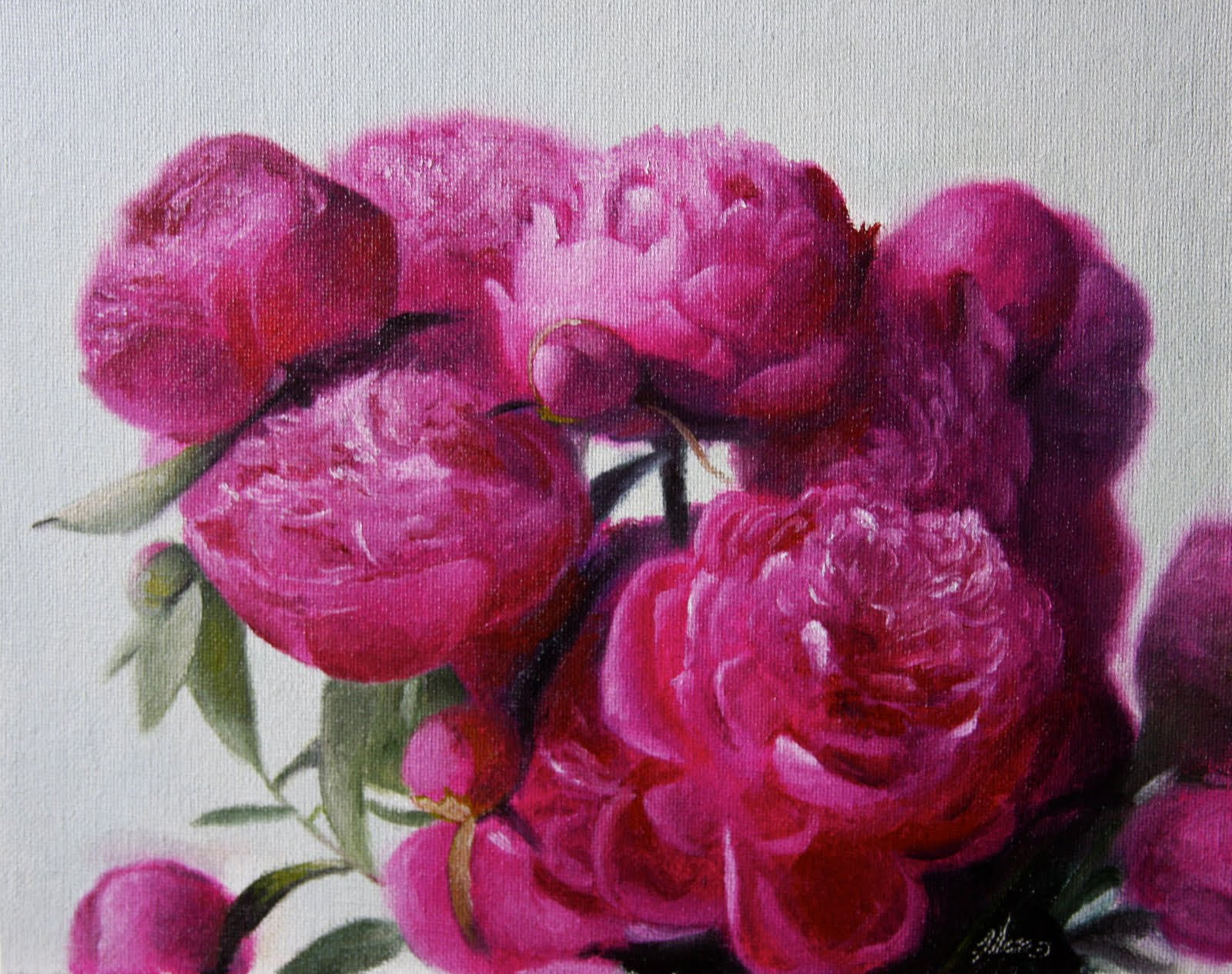 """Peonies Fuchsia"" original fine art by Jonathan Aller"