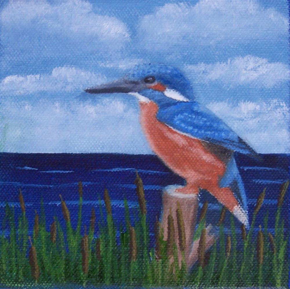 """Kingfisher #2"" original fine art by John Marcum"