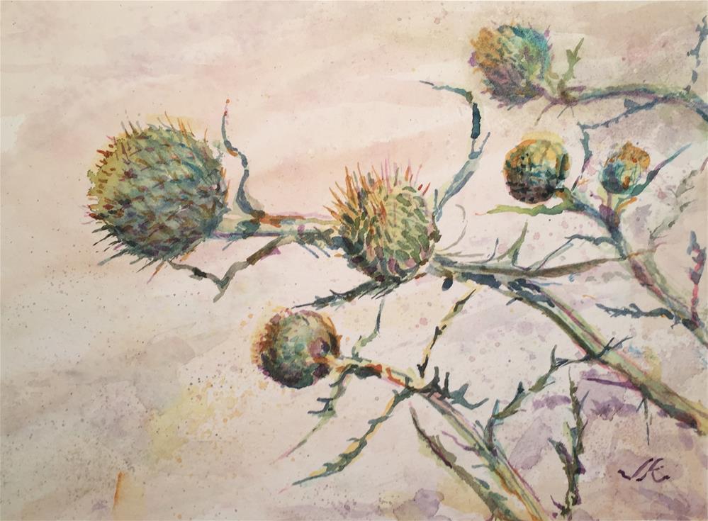 """""""Parry's Thistle"""" original fine art by jean krueger"""