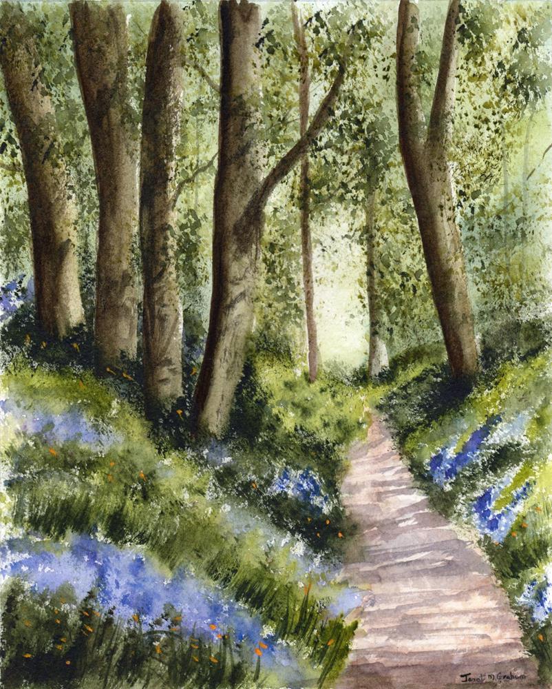 """Bluebell Walk"" original fine art by Janet Graham"
