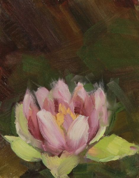 """Landscape Oil Painting Water Lily II by Colorado Artist Susan Fowler"" original fine art by Susan Fowler"