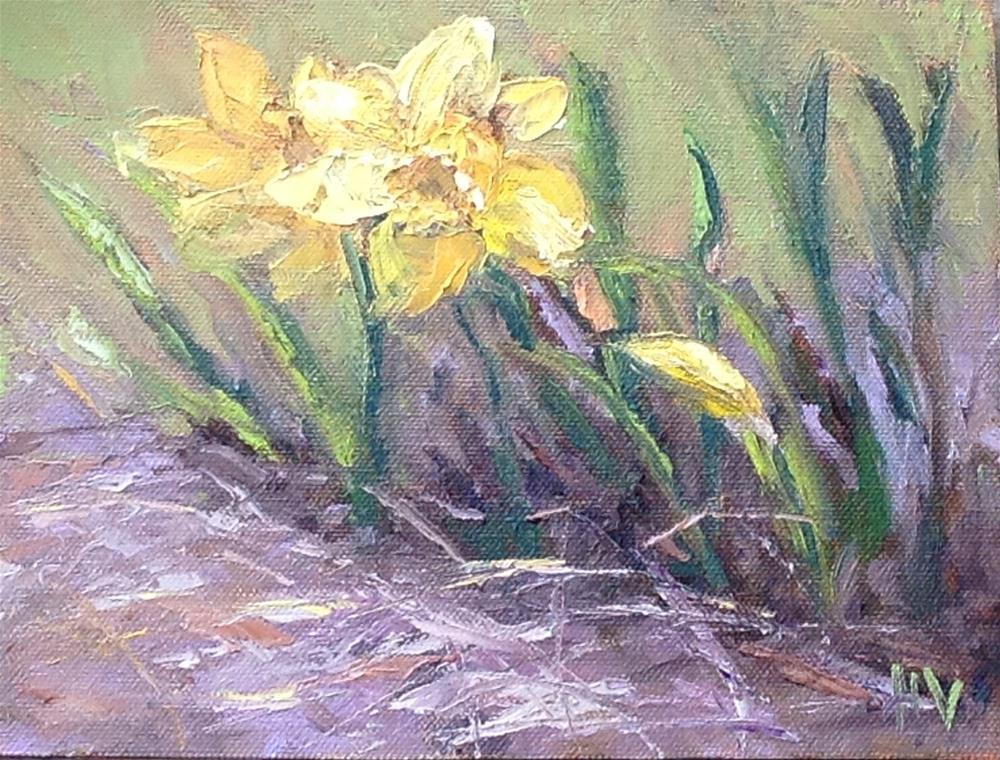 """""""First Daffodils Rt. 217"""" original fine art by Helen Viebrock Hamel"""