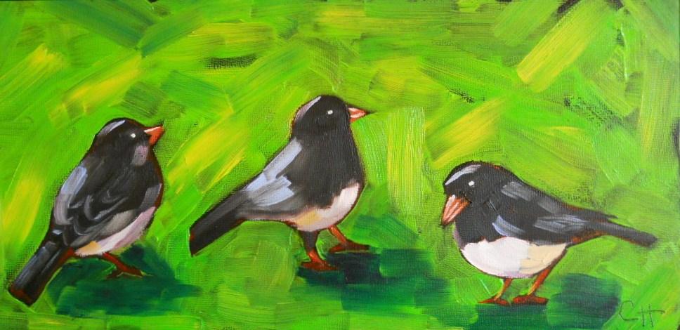 """""""Three Juncos"""" original fine art by Claire Henning"""