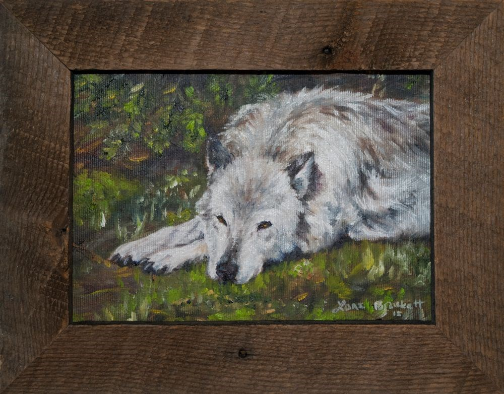 """Watchful Rest"" original fine art by Lori Brackett"