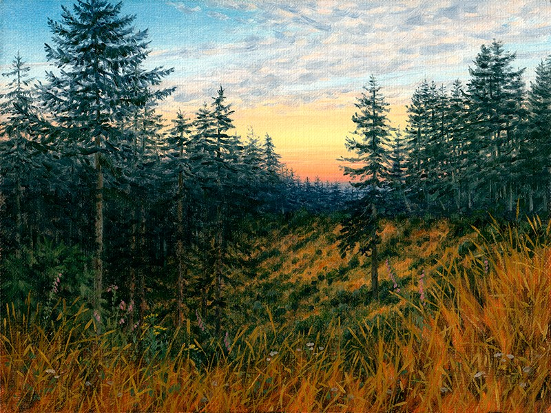 """C1597 Evening in the Coast Range (Oregon)"" original fine art by Steven Thor Johanneson"