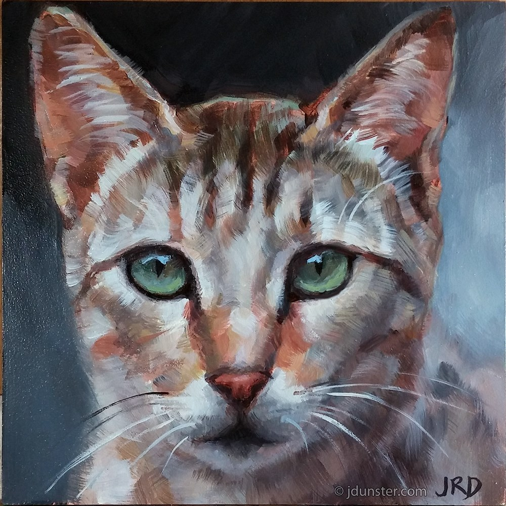 """Elegant Multi-Colored Cat"" original fine art by J. Dunster"