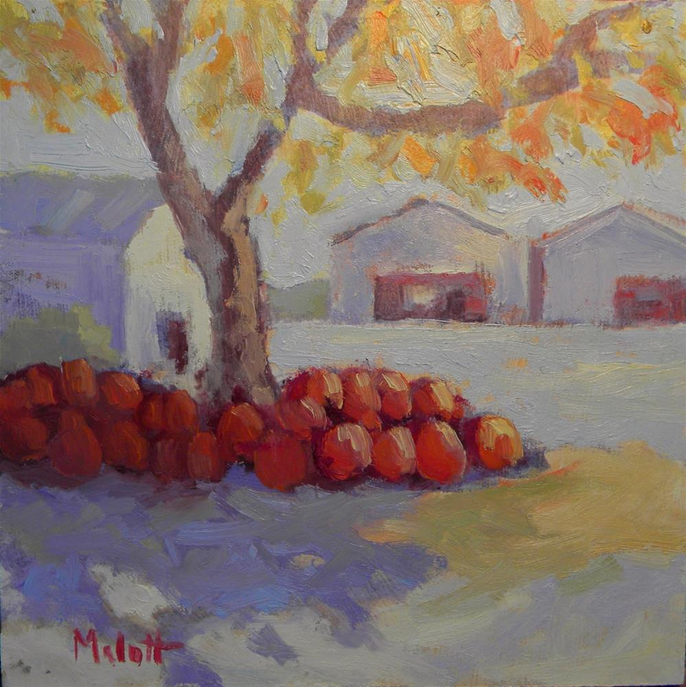 """Pumpkins For Sale Farmer's Market Contemporary Painting Impressionism"" original fine art by Heidi Malott"