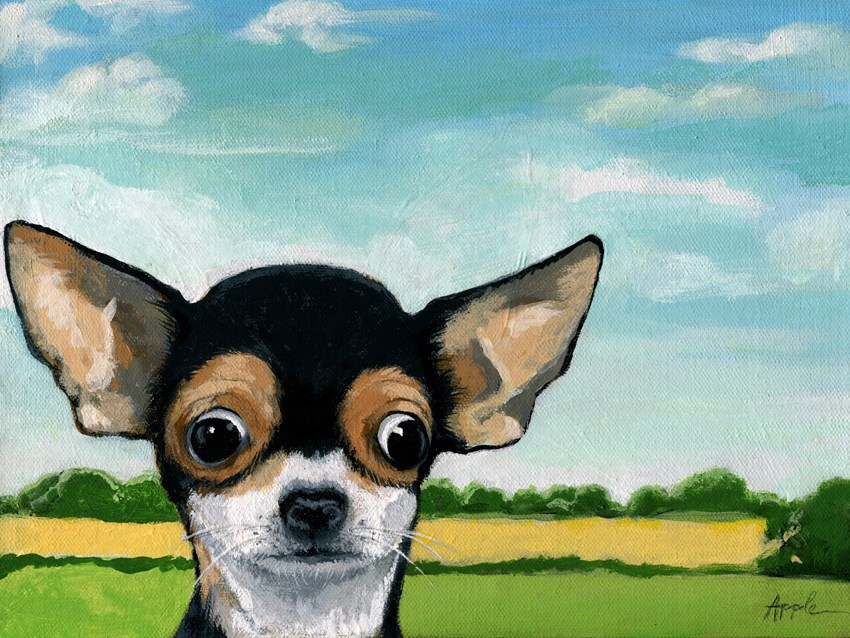 """Chihuahua animal dog portrait realistic painting by Linda Apple"" original fine art by Linda Apple"
