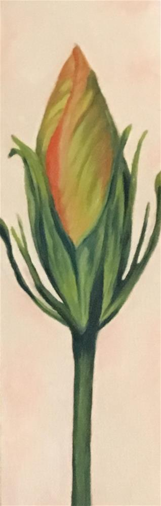 """Hibiscus Bud"" original fine art by Karen Collins"