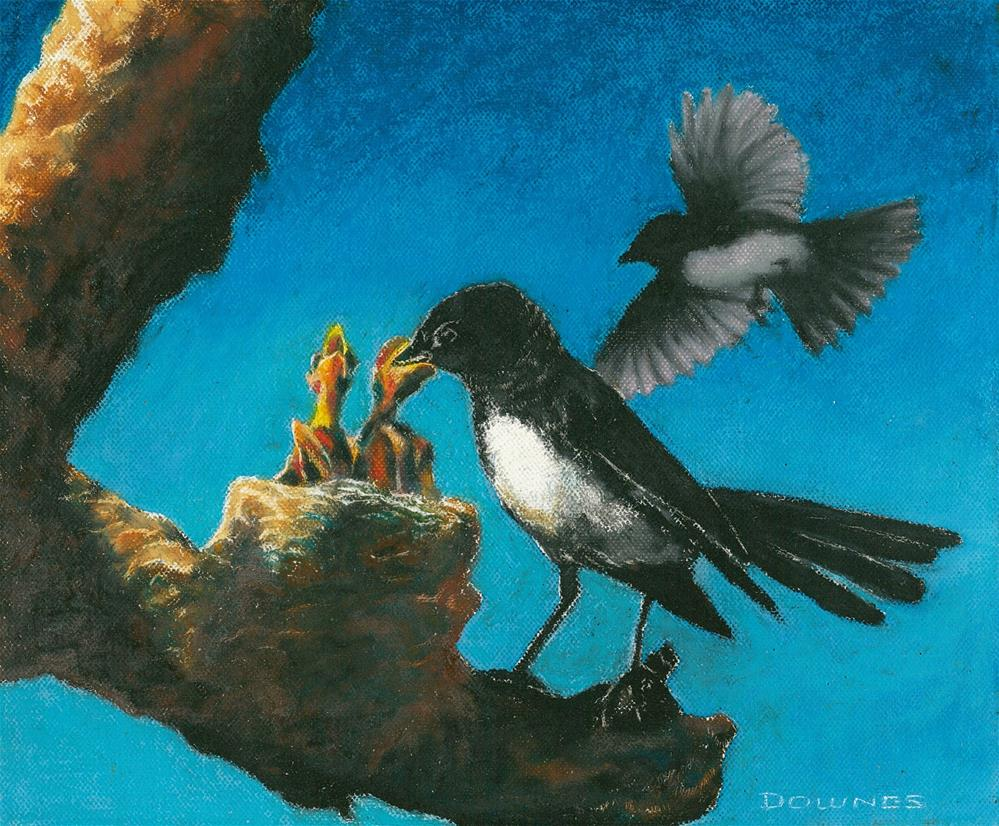 """335 WILLY WAGTAILS"" original fine art by Trevor Downes"