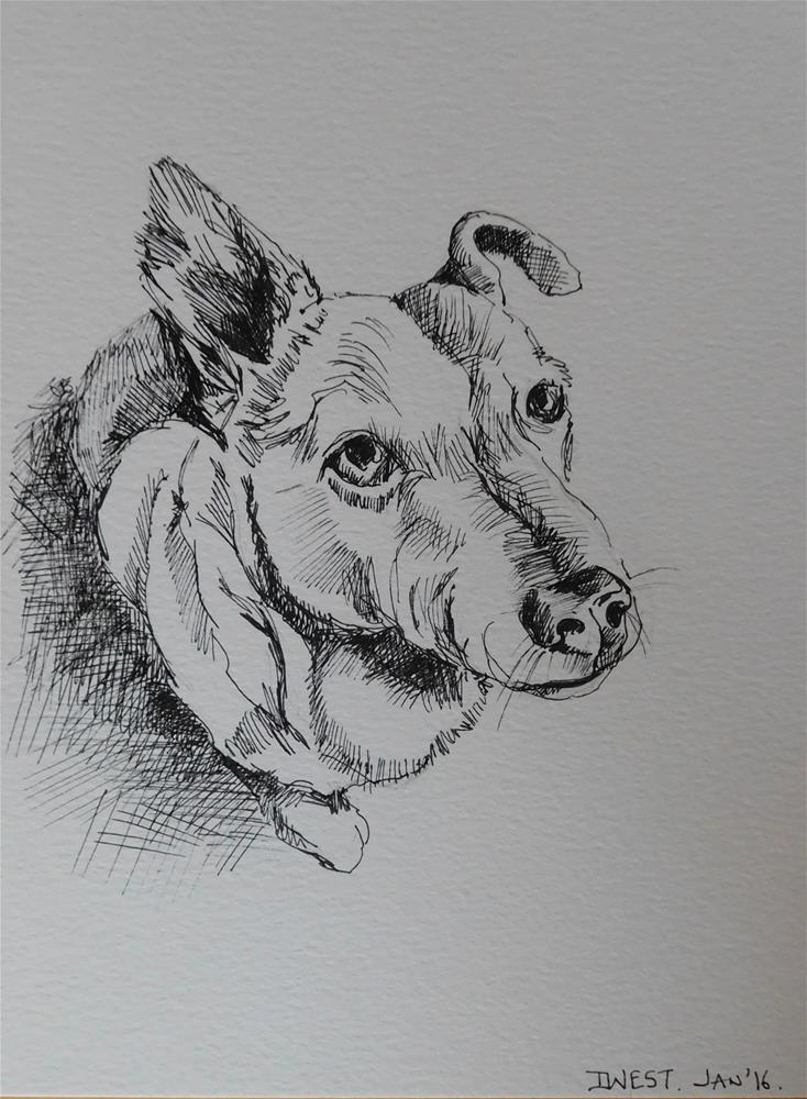"""Dog Sketch 6"" original fine art by Daryl West"