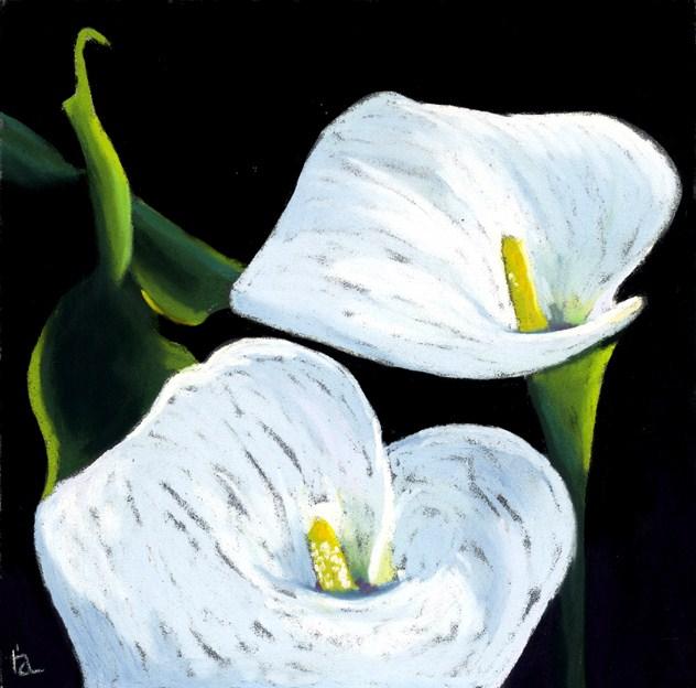 """Calla Lilies"" original fine art by Ria Hills"