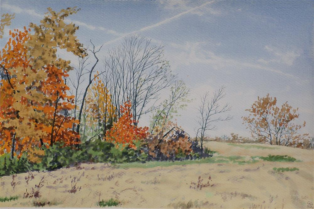 """""""Woodlot Corner in Color"""" original fine art by Greg Arens"""
