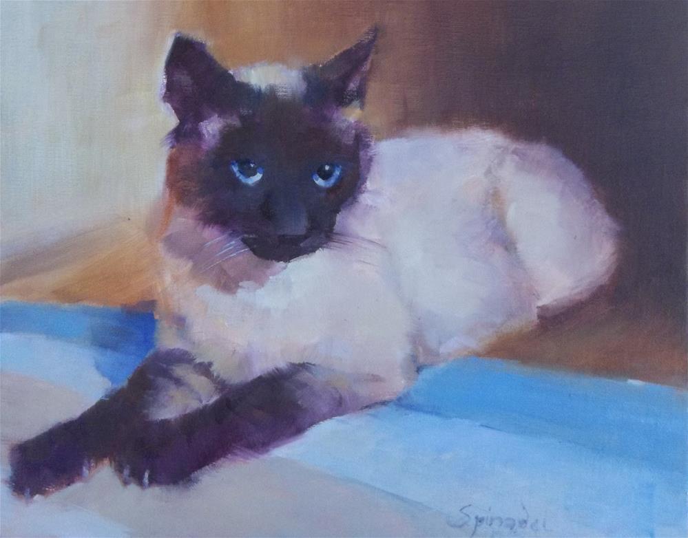 """Siamese Kitty"" original fine art by Nancy  Spinadel"