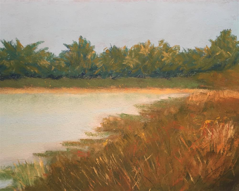 """Bird Sanctuary Galveston Island # 1"" original fine art by Howard Clark"