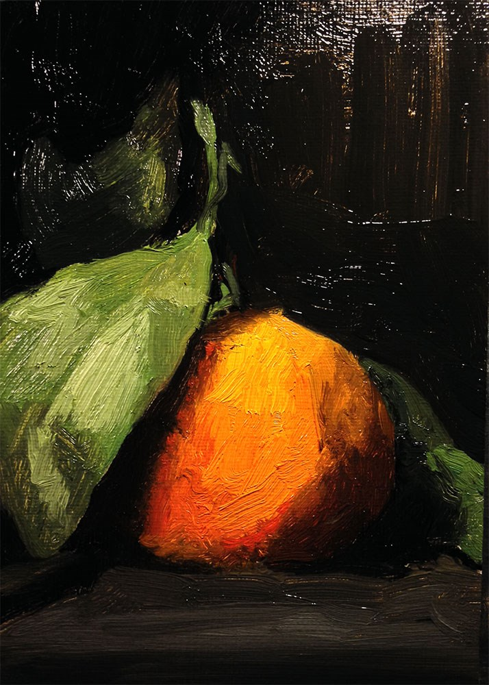 """Satsuma on Black Sketch"" original fine art by Chris Beaven"